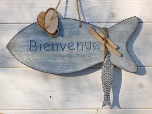 plaque-poisson